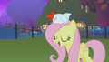 Fluttershy and the chicken S01E17.png