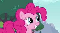 Pinkie Pie smiling -really-- S4E12