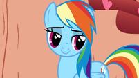 Rainbow Dash looking confident S1E16