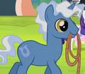 Royal Pin horseshoe cutie mark ID S04E22.png