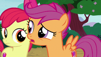 "Scootaloo ""about the dog?"" S7E6"