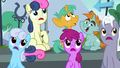 Spectating ponies in shock S6E7.png