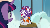Twilight Velvet's wet mane covers her face S7E22