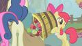 Apple Bloom dumps apples in Sweetie Drops's bag S01E12.png