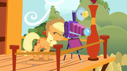 Applejack taking a picture S03E08