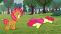 Babs sees Apple Bloom on the ground S3E08.png