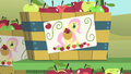 Fluttershy ad S1E20.png