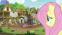 Fluttershy observing the expert ponies' progress S7E5