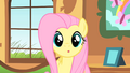Fluttershy stares at Ponyville clock tower S01E22.png