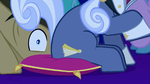 Hoity Toity sitting on Dr. Hooves' face S1E14