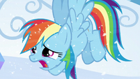 "Rainbow ""it's freezing out here!"" S6E2"