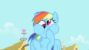 Rainbow Dash Grimassen S1E22