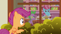 Scootaloo observing Spike and Mrs. Cake S9E23