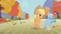 Applejack hits Rainbow Dash S01E13.png