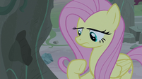 Fluttershy dislodges a small piece of the rock S7E25