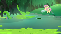 Fluttershy looking out at the swamp S7E20