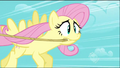 Fluttershy realizes she has to give it her all S2E02.png