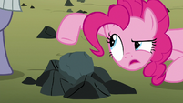 Pinkie Pie -I would not describe that- S8E3