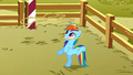 Rainbow Dash with a lasso S1E13.png