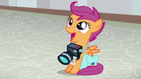 Scootaloo amazed by pictures of Baby Rainbow S7E7