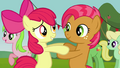 Apple Bloom 'I know it hasn't been that long' S3E08.png