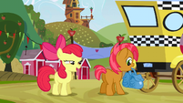 Apple Bloom -I can't wait- S3E8