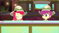 Apple Bloom shakes her head at Scootaloo SS11.png