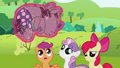 CMC looking at Smarty Pants S02E03.png