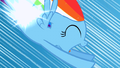 Filly Rainbow Dash's flank shining S1E23.png