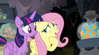 "Fluttershy ""Meadowbrook was looking for a cure"" S7E20"