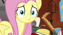 Fluttershy after being smacked S2E19