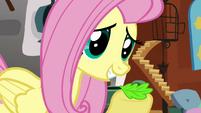 Fluttershy leaf S02E19