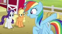 "Rainbow Dash ""every house in Ponyville!"" S6E15"