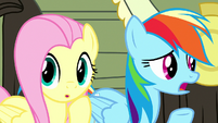 "Rainbow Dash ""we've tried everything!"" S8E18"