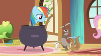Rainbow Dash they're still at it S3E13