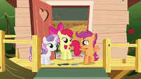 "Scootaloo ""let's tell Twilight!"" S6E19"