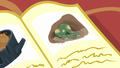 An illustration of a tortoise waking up from hibernation S5E5.png