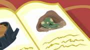 An illustration of a tortoise waking up from hibernation S5E5