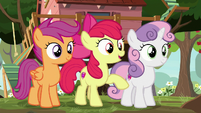 Apple Bloom -well, now you do- S8E12