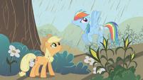 Applejack and Rainbow Dash conversing about the rain S2E1