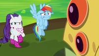 Dash and Rarity's faces twist in disgust S8E17