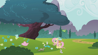 Fluttershy picking flowers S1E10
