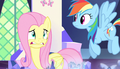 Fluttershy rethinks staying with Spike S5E1.png