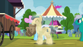Ivory and Shoeshine with paper bags S4E22.png