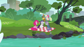Pinkie, Rarity, and Maud in the park S6E3.png