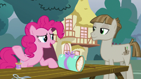 "Pinkie Pie ""do you have any ideas"" S8E3"