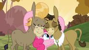 Pinkie helps S2E18