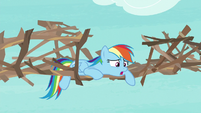 "Rainbow Dash ""easy to work with"" S8E9"