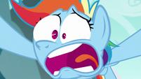 Rainbow Dash --never heard of the Wonderbolts-!-- S6E6