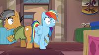 Rainbow Dash bumps into Quibble Pants S6E13